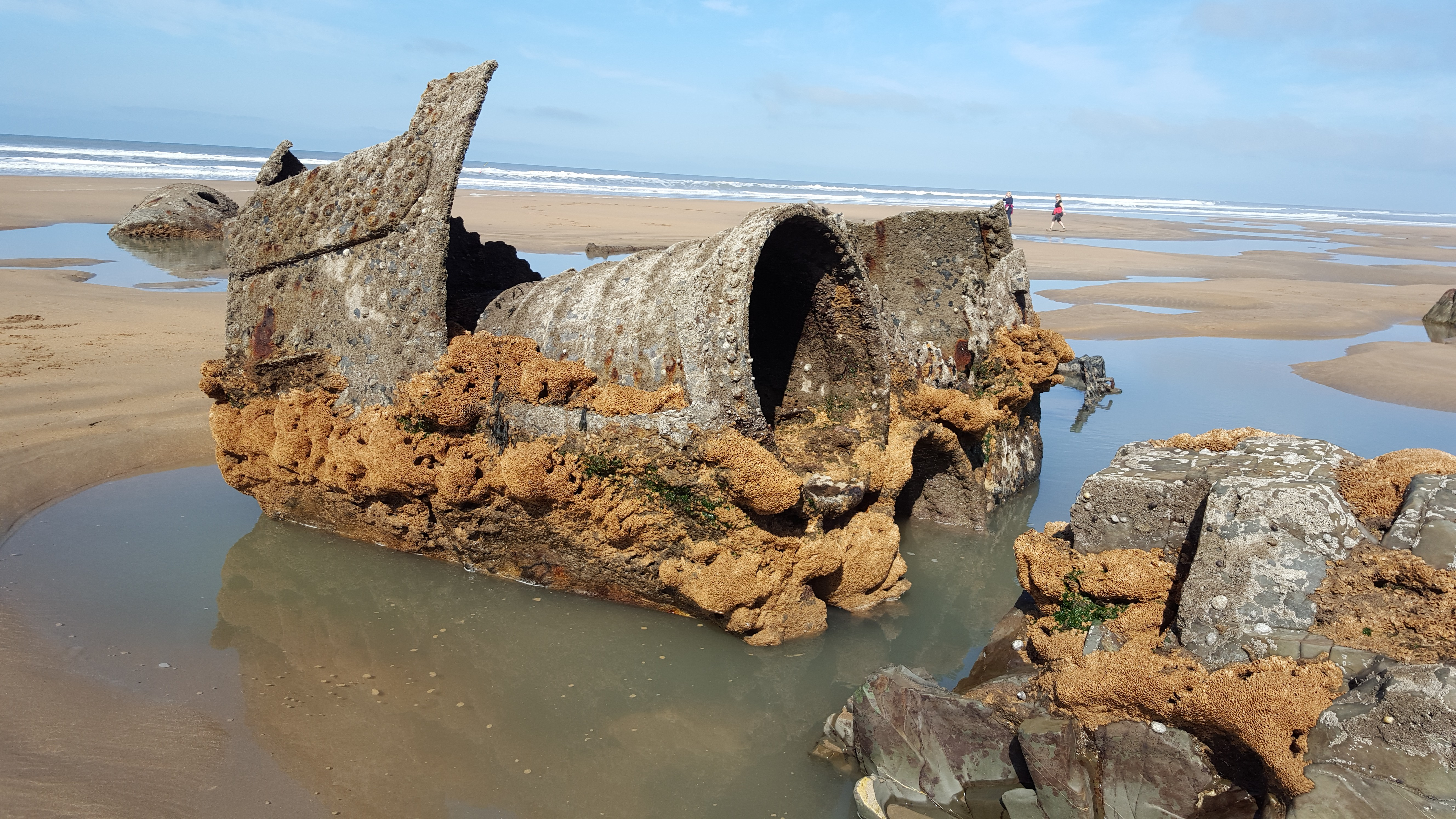 Part of the shipwreck
