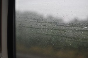 Day 526:  I have always loved watching raindrops chase each other on windows.