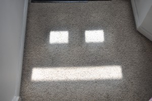 Day 152:  The sunlight streaming in through the windows in my front door created this face on my hallway carpet.  Still making me smile days later! :)